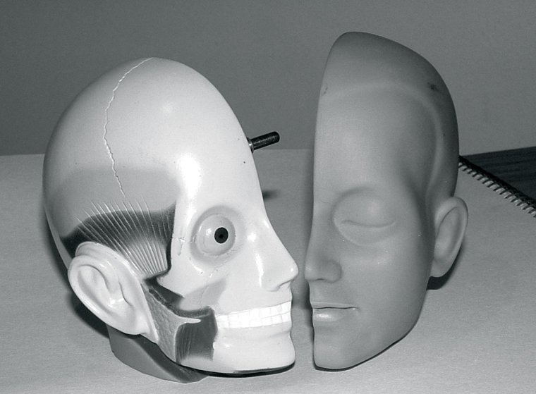 plastic-model-head-3-1425187